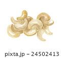 カシューナッツ ナッツ 食べ物のイラスト 24502413