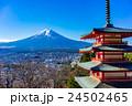 新倉山浅間公園 富士山 冬の写真 24502465