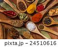 インドのスパイス集合写真 Spice India dish of the curry 24510616