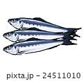 鰯 魚 真鰯のイラスト 24511010