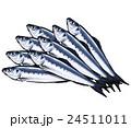 鰯 魚 真鰯のイラスト 24511011