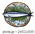 鰯 魚 真鰯のイラスト 24511035