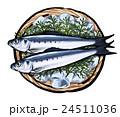 鰯 魚 真鰯のイラスト 24511036