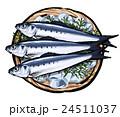 鰯 魚 真鰯のイラスト 24511037
