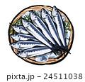 鰯 魚 真鰯のイラスト 24511038