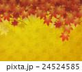 紅葉 24524585