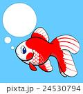 金魚 魚 魚類のイラスト 24530794