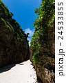 備瀬のワルミ 岩 岸壁の写真 24533855