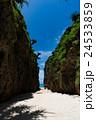 沖縄県 備瀬のワルミ 24533859