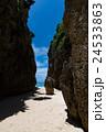 沖縄県 備瀬のワルミ 24533863