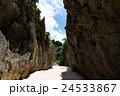 備瀬のワルミ 岩 岸壁の写真 24533867