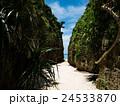 備瀬のワルミ 岩 岸壁の写真 24533870