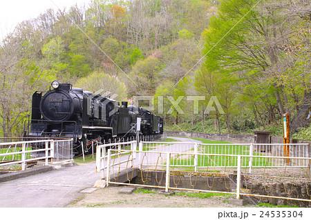 神居古潭(かむいこたん)、SL蒸気機関車(C57、D51)と新緑/北海道旭川市 24535304