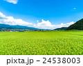 【長野県】田園風景と夏空 24538003