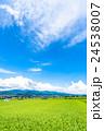 【長野県】田園風景と夏空 24538007