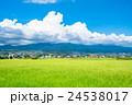 【長野県】田園風景と夏空 24538017