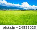 【長野県】田園風景と夏空 24538025
