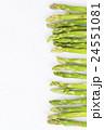 アスパラ アスパラガス 食べ物の写真 24551081