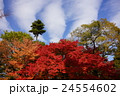 京都南禅寺界隈東山の紅葉 24554602