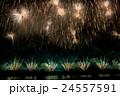 新潟県 長岡まつり花火大会のフェニックス花火 24557591