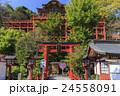 名勝 佐賀祐徳稲荷神社 日本三大稲荷 24558091