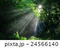 秋田県 亀田不動滝 24566140