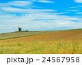 モンサンミシェル近くの農村風景 24567958