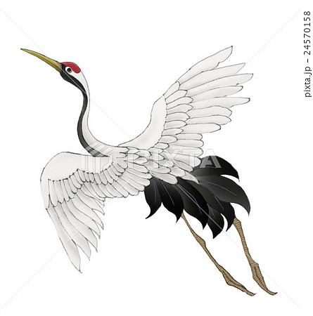 羽ばたく鶴のイラスト素材 [24570158] - PIXTA