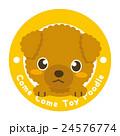 トイプードル トイプー 犬のイラスト 24576774