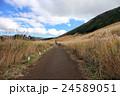 仙石原 秋のすすき草原 入り口側からの風景 24589051