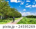 多摩川 サイクリングロード 24595269