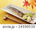焼き秋刀魚 24599530