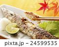 焼き秋刀魚 24599535