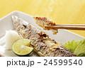 焼き秋刀魚 24599540