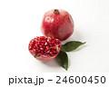くだもの フルーツ 実の写真 24600450
