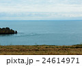 フランスの避暑地Cancale近くの岬の景観 24614971