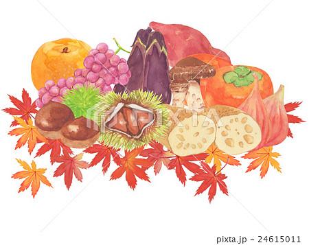 秋の味覚 水彩イラストのイラスト素材 24615011 Pixta