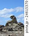 男鹿半島のゴジラ岩 24615370