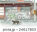 路地 猫 歩くのイラスト 24617803