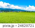 【長野県】田園風景と夏空 24620721