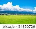 【長野県】田園風景と夏空 24620729