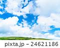 【長野県】山の自然風景【夏】 24621186