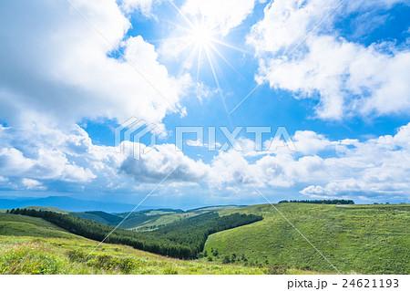 【長野県】山の自然風景【夏】 24621193