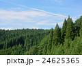 杉の森 24625365