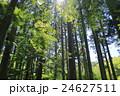 見晴公園 新緑&苔 <香雪園> in 函館 24627511