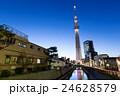 東京都 夜 スカイラインの写真 24628579