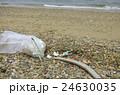 漂流ゴミの清掃 24630035