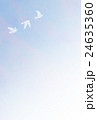 24635360