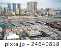 築地市場 市場 築地の写真 24640818