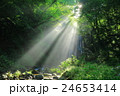 秋田県 亀田不動滝 24653414